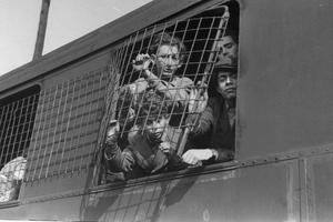 Exodus: Jewish refugee boys on board a train after the end of World War II