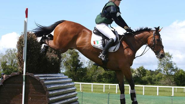 Jodie O'Keeffe and Kachemire enjoyed success at Tattersalls DAMIEN EAGERS
