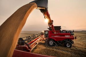 Loaded: Case IH combines are offered with the latest tyres from Michelin, which use low pressures to support high loads.