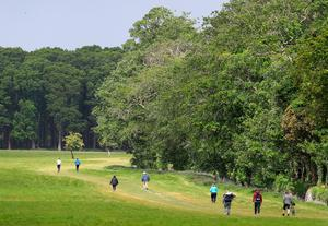 People walking in Dublin's Phoenix park over the weekend. Photo: Brian Lawless/PA Wire