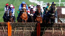 Willoughby Court ridden by David Bass leads the field