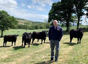 Former Ireland and Ulster captain Rory Best has had time to reflect on his rugby career on the family farm during the lockdown