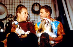 A scene from the film 'Best in Show'