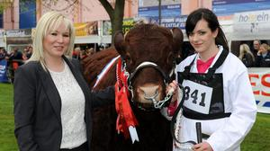 Agriculture Minister Michelle O'Neill pictured on the cattle lawn at Balmoral Show.