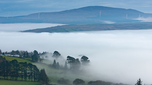 Ceo insan ghleann - low lying clouds in the glen of the Gearagh river give the area a heavenly look. Pic: Tadhg Ó Duinnín