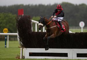 Peregrine Run and Kevin Sexton sail over the last at Punchestown last month