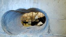 A handout photo received from the British Metropolitan Police Service in London on April, 22, 2015, shows holes bored through a half-meter thick concrete wall drilled to access a vault in a safe deposit centre in Hatton Garden, London