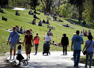 Rays of hope: People enjoy the sunny weather in a crowded Volkspark Friedrichshain in Berlin over the Easter weekend. Picture: Reuters