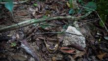Human bones are seen near abandoned human trafficking camp in the jungle close the Thailand border at Bukit Wang Burma in northern Malaysia May 26, 2015. Malaysian police forensic teams, digging with hoes and shovels, began the grim task on Tuesday of exhuming the bodies of dozens of suspected victims of human traffickers found buried around jungle camps near the Thai border. REUTERS/Damir Sagolj       TPX IMAGES OF THE DAY      TEMPLATE OUT
