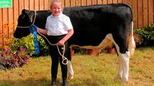 Winner: Jo Quealy with Grenan Shamrock, a prizewinner in the calf class at Iverk Show in 2019.