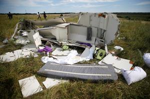 Parts of the wreckage are seen at a crash site of the Malaysia Airlines Flight MH17 near the village of Hrabove (Grabovo), Donetsk region