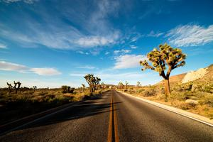 The device can work in areas like the Mojave Desert in the US which has 20pc humidity (Stock picture)
