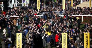 Huge crowds attended the Cheltenham Festival last month as the spread of the Coronavirus took hold