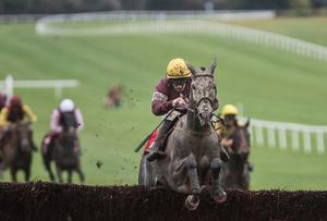 Noel Meade's Tout Est Permis is an intended runner for the Irish Grand National