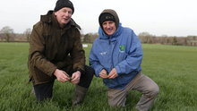Farmer, Dan OLoughlin, left and Denis Bourke, from Johnstownbridge pictured on his farm at , Mountrice,  Monasterevin, Kildare, at the Grass10 Early Spring Grazing Sheep Walk, Co. Kildare. Picture credit; Damien Eagers / INM