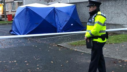 The scene in Mount Andrew Court near Lucan where gardai discovered the body of a man in a burning car (Photo: Conor Feehan)