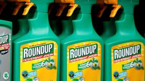 Monsanto's Roundup weedkiller that contains glyphosate for sale in France. REUTERS/Charles Platiau