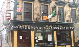 The Hairy Lemon in Dublin