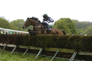 UP AND OVER: Piper Hayes and Andrew Duff on the way to winning a point-to-point race in Fermanagh in 2005. Photo: Healy Racing