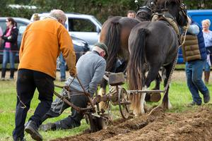 Competitors on the final day of the 2014 National Ploughing Championships at Ratheniska, Co. Laois.