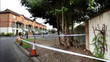 Gardai at the scene where human remains were discovered at Lissenfield on the Lower Rathmines Road.