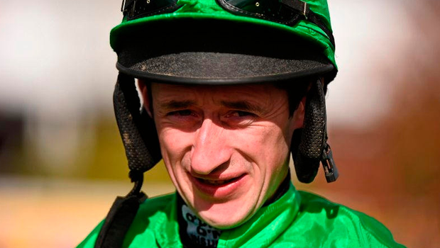 Roger Loughran will hope for a fairytale festival at Cheltenham next week. Picture credit: Cody Glenn / Sportsfile