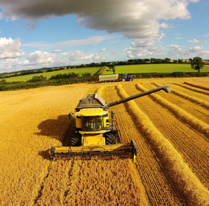 Drone footage captured by sheep farmer and aerial photographer Paul Brennan (Skyfly Photography)