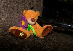 A teddy bear left at Riverside appartments, Poddle Park, Kimmage after the death of a boy (3). Photo: Tony Gavin