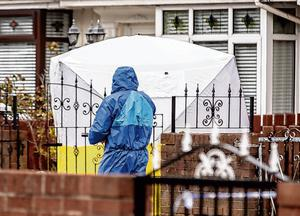 The scene of the shooting in the Etna Drive area of north Belfast. Photo: Kevin Scott/Belfast Telegraph
