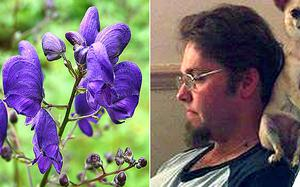 Nathan Greenaway, the deadly Devil's Helmet and Monkshood plant