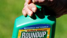 FILE PHOTO: A man uses a Monsanto's Roundup weedkiller spray containing glyphosate in a garden in Bordeaux, France, June 1, 2019. REUTERS/Regis Duvignau/File Photo