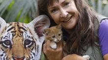 No Repro Fee. WHISKAS LAUNCHES PARTNERSHIP WITH WWF TO HELP PROTECT TIGERS.   World Tiger Day, Monday 29th July Campaign ambassador Pauline McLynn, pictured along with kitten Bumble-bee to launch a partnership between Whiskas, Irelands number 1 cat care brand and WWF, a global expert in big cat conservation, to help protect the worlds wild tigers. Through the charity activation, which is the biggest in Whiskas history, Whiskas will raise 583,000 to support WWFs global tiger conservation efforts, which aims to double the number of tigers in the wild by 2022. Pic. Robbie Reynolds  As part of the campaign, a contribution from every special pack of Whiskas sold in Ireland will go towards helping to protect a tiger for a day.   The funds raised by Whiskas will have a particular focus on supporting the daily work of WWF in the Terai Arc region of Nepal, one of the few remaining strongholds, which is currently home to around 120 adult tigers.   For more information, please visit http://www.whiskas.ie/wwf/. Follow us: https://www.facebook.com/whiskasireland?fref=ts  For more information, please contact;  Aisling McVeigh (Edelman) aisling.mcveigh@edelman.com  01-678 9333 / 086 8662064