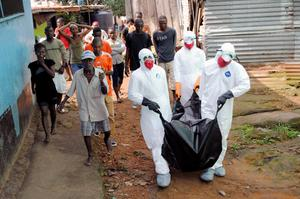 A body is removed in Liberia where Ebola is taking a tragic toll. Photo credit: REUTERS/James Giahyue