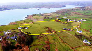 Handsome views: The 21ac farm at Glandore is guided at €10,000-12,000/ac