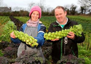 Padraig Fahy and Úna Ní Bhroin at their Beechlawn Organic farm outside Ballinasloe, Co Galway Photo: Hany Marzouk