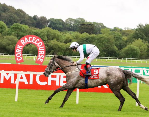 Who's Steph and Colin Keane winning at Cork in June