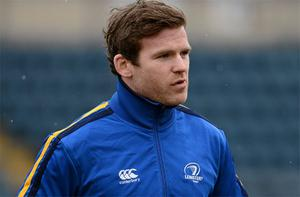 Gordon D'Arcy is determined to add an Amlin Challenge Cup winners' medal to his collection