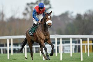 Double Irish, being ridden by Davy Russell