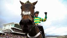 Barry Geraghty celebrates aboard Epatante following their victory in the Champion Hurdle at Cheltenham. Photo: PA via Reuters