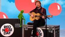 Ed Sheeran and Kermit the frog
