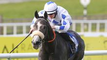 Lustown Baba grabbed another win at the Curragh