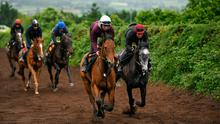 Niamh Barry on Guttrel and Luke Cummings on Kenito during a recent visit to Joseph O'Brien's yard at Owning Hill in Kilkenny. Photo: Harry Murphy/Sportsfile