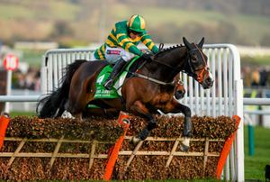 Jezki, under Barry Geraghty, skips to Champion Hurdle glory last year - can he repeat the feat this afternoon? Photo: Barry Cregg / SPORTSFILE