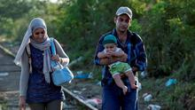 A migrant family, hoping to cross into Hungary, walk along a railway track near the village of Horgos in Serbia