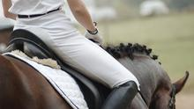 Horse Sport Ireland (HSI), is campaigning for a resumption of competition after equestrian sport was suspended under Level 5 restrictions, which were introduced 10 days ago (stock photo)