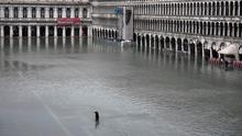 "A general view shows a man crossing the flooded St. Mark's Square after an exceptional overnight ""Alta Acqua"" high tide water level, on November 13, 2019 in Venice. Photo by Marco Bertorello / AFP"