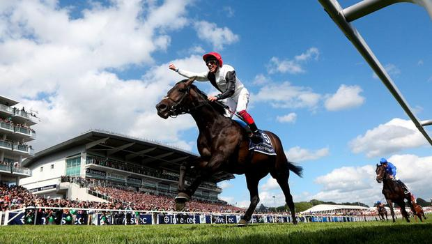 Frankie Dettori celebrates as he rides Golden Horn to win The Investec Derby at Epsom