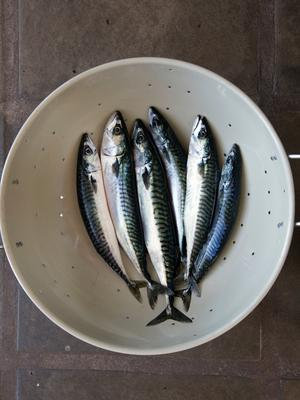Children whose mums ate oily fish in pregnancy shone in tests. Picture: Tony Gavin