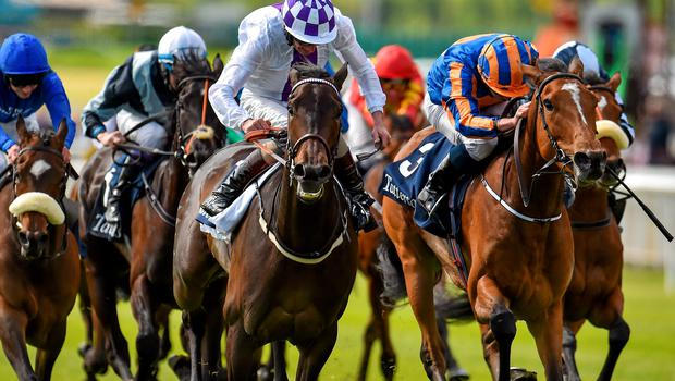 Pleascach (left), here beating Found in the Irish 1,000 Guineas, is on course to run in the Ribblesdale Stakes at Royal Ascot