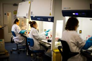 ONGOING CHALLENGE: Covid-19 testing at the UCD National Virus Reference Laboratory, Dublin. Picture: Mark Condren